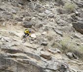 mountain bike skills